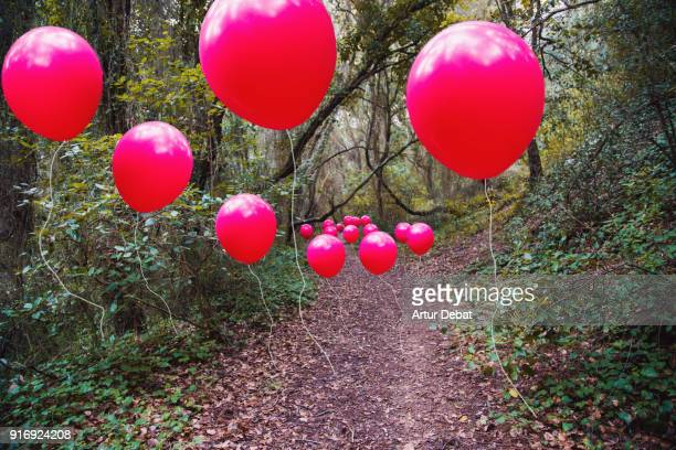 Poetic picture of stop motion pictures in one of a line of red balloons flying in the nature following the path.