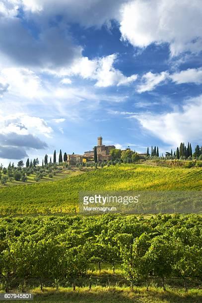 poggio alle mura castle - モンタルチーノ ストックフォトと画像