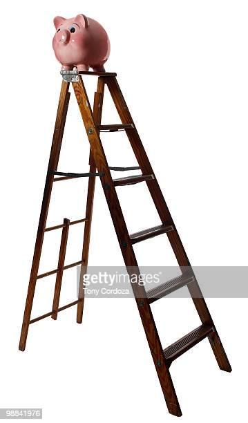 poggy bamk on ladder