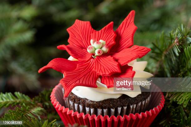poinsettia cupcake - ian gwinn stock pictures, royalty-free photos & images