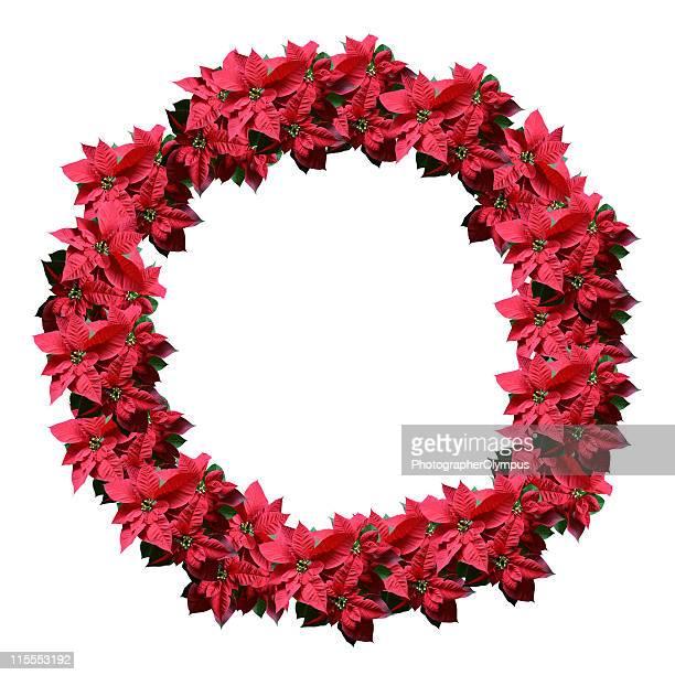 Poinsettia Couronne florale