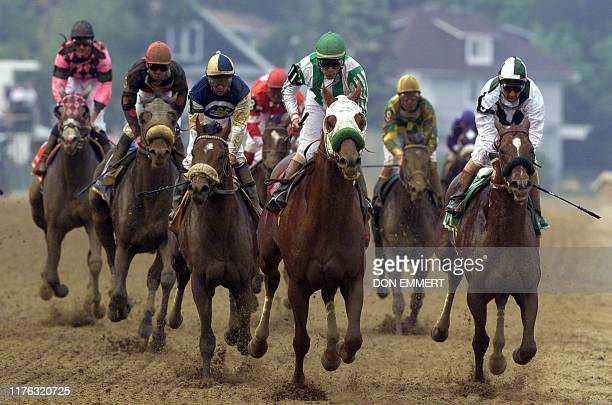 Point Given with jockey Gary Stevens aboard races for the finish line to win the 126th running of the Preakness Stakes at Pimlico Race Course 19 May...