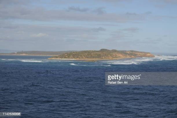 point nepean victoria australia - rafael ben ari stock pictures, royalty-free photos & images