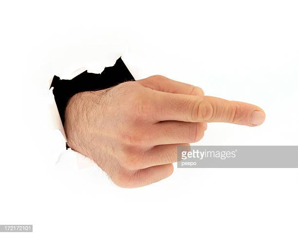 pointing hand bursting from white background - animal finger stock photos and pictures