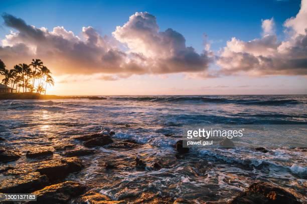 poipu beach sunrise kauai island hawaii usa - media_in_honolulu,_hawaii stock pictures, royalty-free photos & images