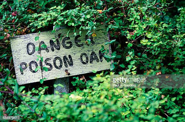 poison oak warning sign - poison oak stock pictures, royalty-free photos & images
