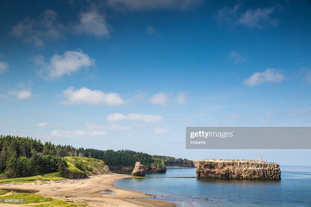 Pokeshaw Beach : Stock Photo