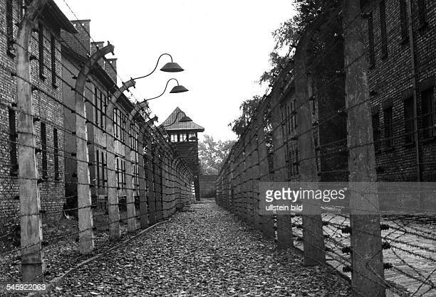Poland Auschwitz former concentration camp barbed wire fence and barbican 1988