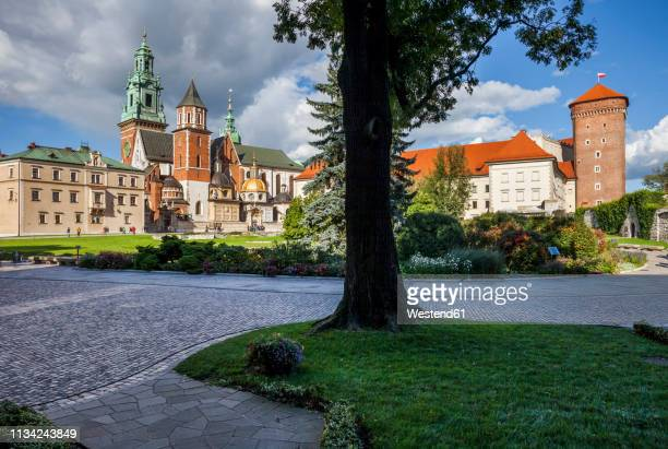 poland, krakow, wawel cathedral and royal castle - wawel cathedral stock pictures, royalty-free photos & images