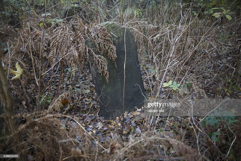 Poland, Lodz, Jewish cemetery : News Photo