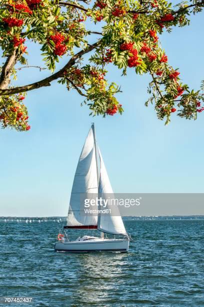 Poland, Masuria, Sailing boat on Lake Niegocin