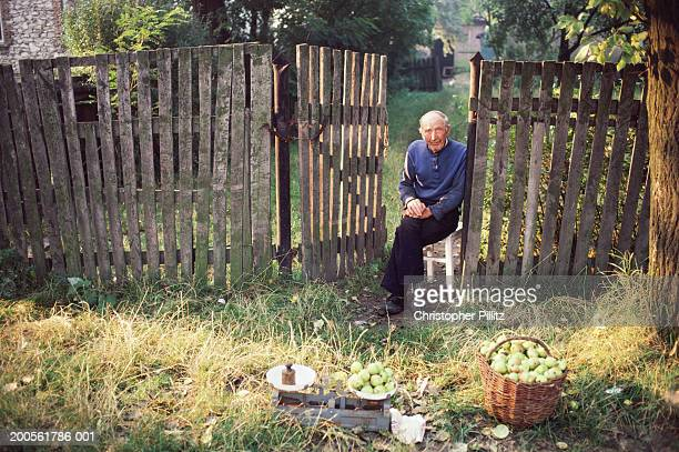 Senior man sitting by fence in front of farm selling apples, portrait