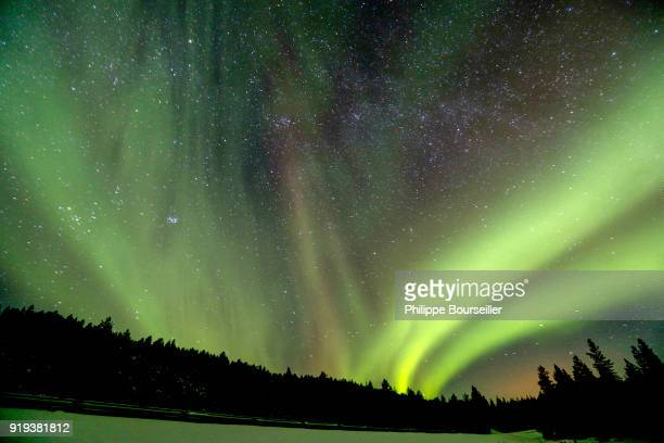 A polar aurora is a luminous phenomenon characterized by extremely colourful veils in the night sky with green being predominant Caused by the...
