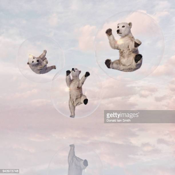 Polar bear cubs in floating transparent glass spheres