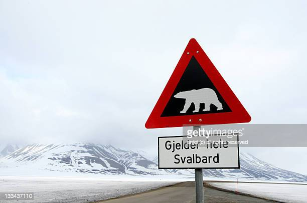 polar bear sign in longyearbyen, svalbard, norway - animal crossing stock pictures, royalty-free photos & images