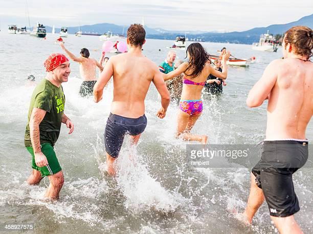 polar bear swim - english bay stock photos and pictures