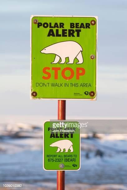 Polar Bear Warning Sign Churchill Manitoba Canada