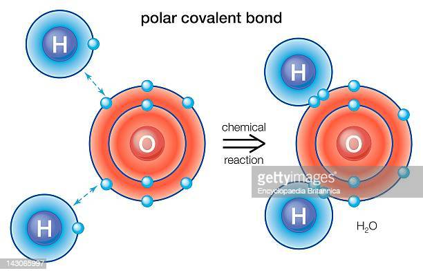 Polar Covalent Bond In Polar Covalent Bonds The Electrons Are Shared Rather Than Being Transferred From One Atom To The Other As In An Ionic Bond
