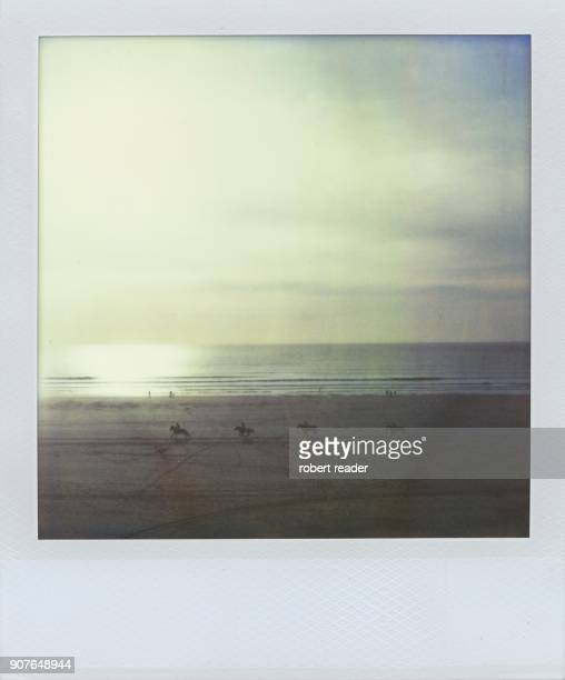 Polaroid of horses on beach