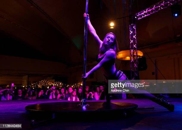Pole dancer performs on stage at The Naughty But Nice Show at Vancouver Convention Centre on February 08, 2019 in Vancouver, Canada.