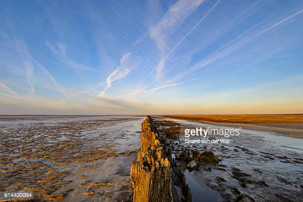 """poles on tidal sandflats during sunset over the waddensea - """"sjoerd van der wal"""" stock pictures, royalty-free photos & images"""