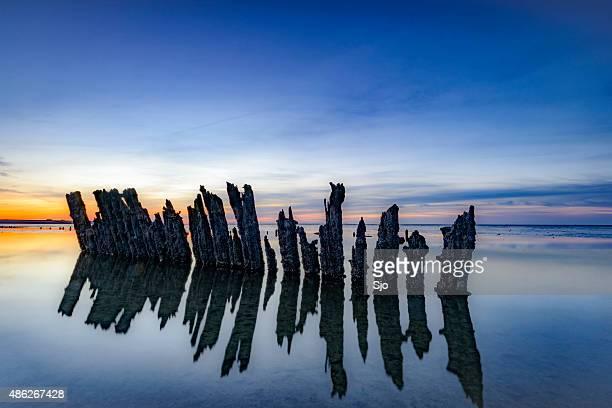 poles standing in a colorful sunset - noord holland stockfoto's en -beelden