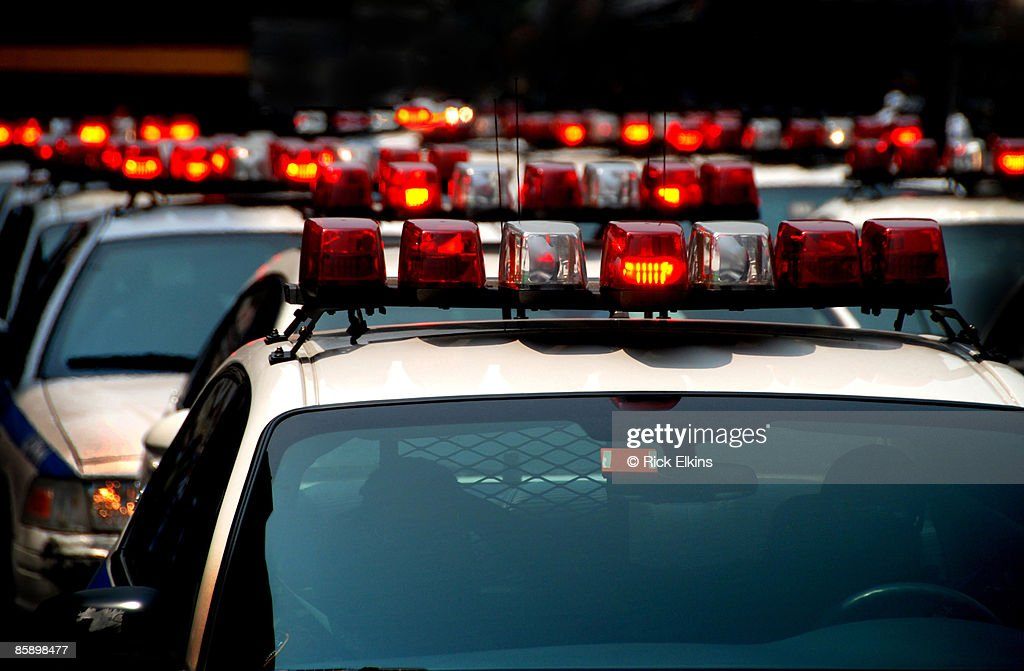 Police Cars with Lights : Stock Photo