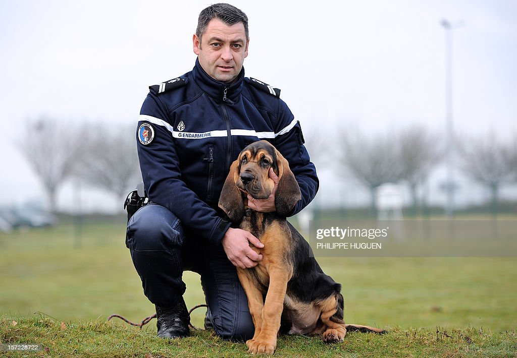 FRANCE-GENDARMERIE-CANINE-SQUAD : News Photo