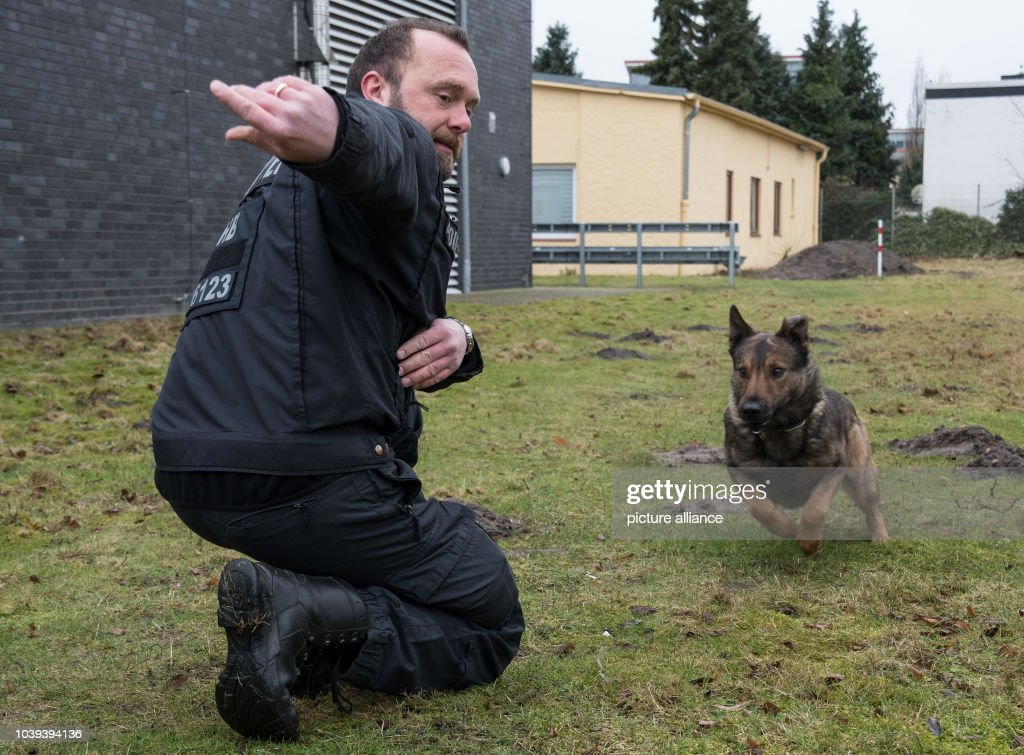 become police dog trainer