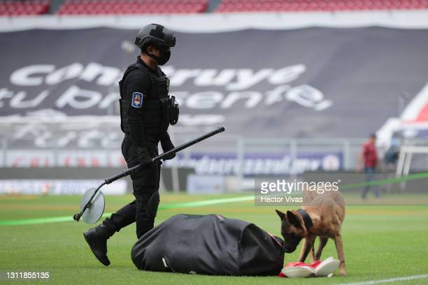 Police dog inspects a bag of footballs prior the 14th round match between Cruz Azul and Chivas as part of the Torneo Guard1anes 2021 Liga MX at...