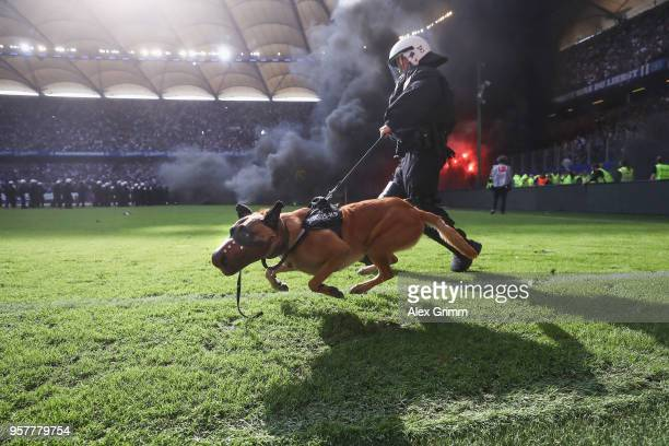 Police dog is seen on the pitch as fans throw flares during the Bundesliga match between Hamburger SV and Borussia Moenchengladbach at...
