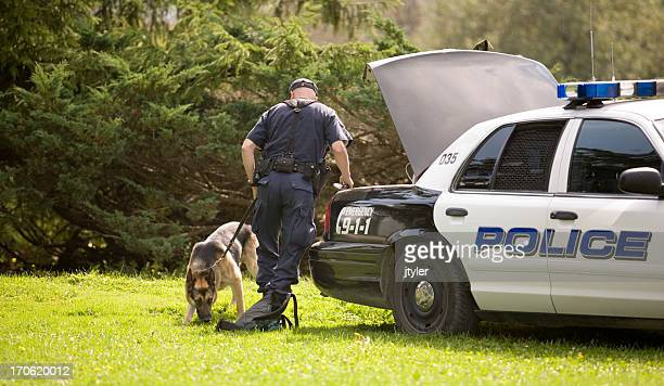 police dog - police dog stock photos and pictures