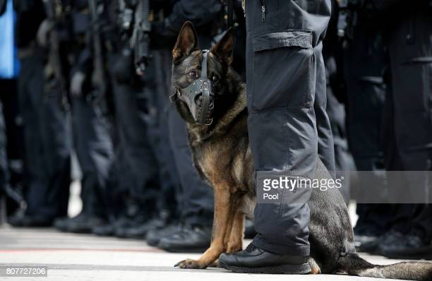 A police dog stands with its handler during a visit by German Interior Minister Thomas de Maiziere to a special federal police unit at the fair halls...