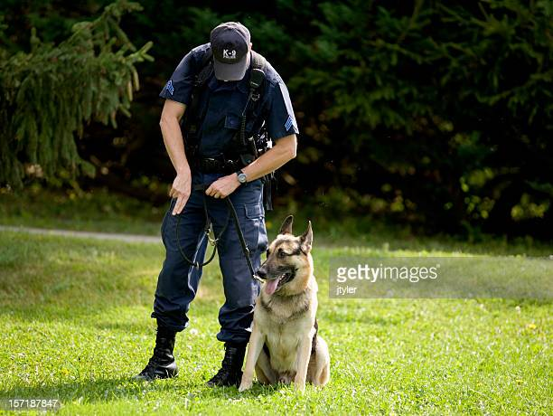police dog training - police dog stock photos and pictures
