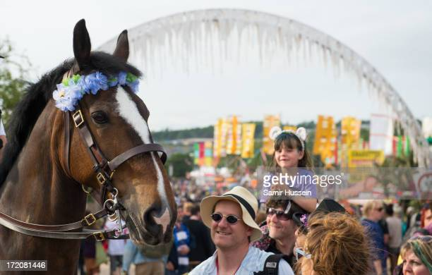 Police horse attends the Glastonbury Festival of Contemporary Performing Arts at Worthy Farm Pilton on June 30 2013 in Glastonbury England