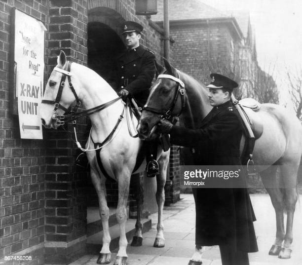 Police horses at an Xray unit Hobson's choice wonders what it is all about when Constable Thomas Bodessa of the Mounted Section of Liverpool City...
