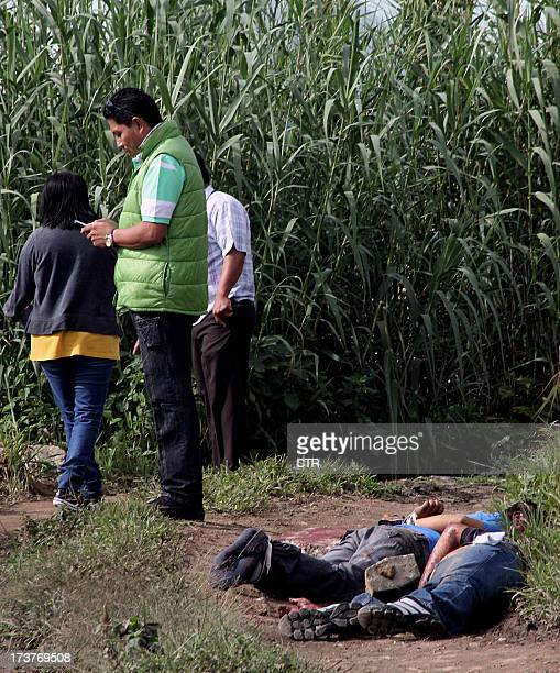 Police investigators stand next to the body of El Imparcial newspaper photojournalist Alberto Lopez Bello and another yet unidentified in a cornfield...