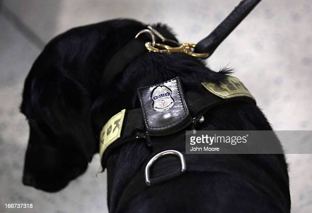Police K-9 unit stands by as train passengers pass through Penn Station on April 16, 2013 in New York City. Police were out in force throughout New...