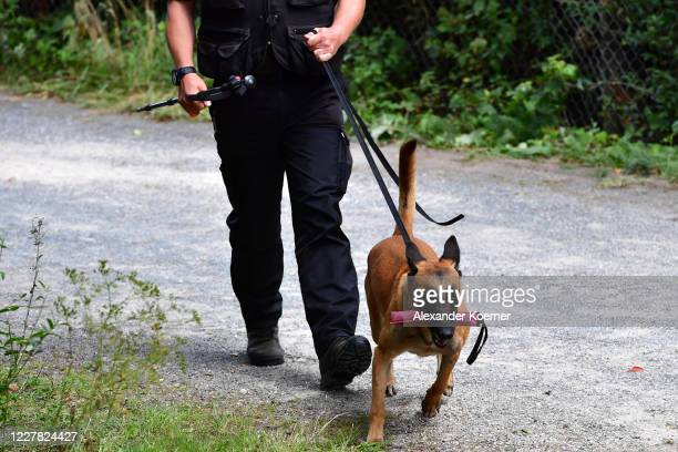Police officer and a detection dog are seen at an allotment as police continue to search the area in relation to the disappearance of Madeleine...