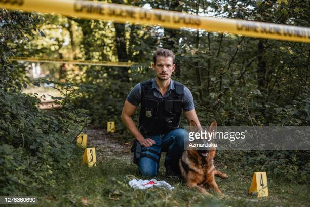 k9 police officer and trained dog at woodland crime scene - police dog stock pictures, royalty-free photos & images