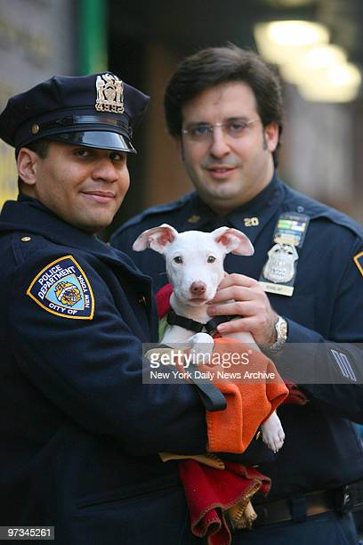 Police officer Andrew Dorsett and Sgt Rick Khalaf hold a 5monthold pit bull terrier mix that was rescued after being tossed down a garbage chute from...