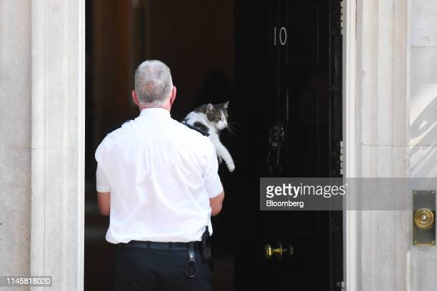 Police officer carries Larry, the Downing Street cat, a brown and white tabby re-homed from Battersea Dogs and Cats Home, inside number 10 Downing...