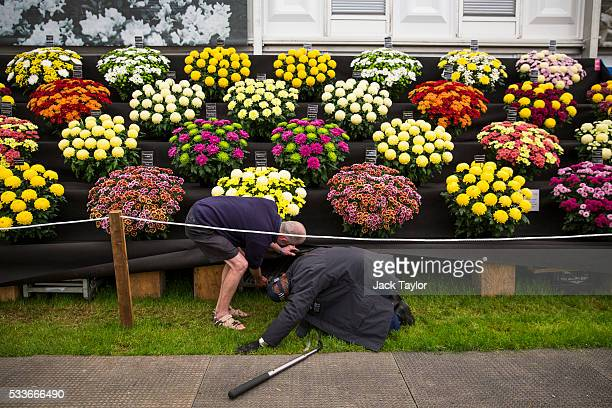 A police officer is assisted as he performs last minute security checks at the Chelsea Flower Show on May 23 2016 in London England The prestigious...