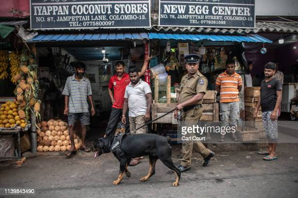 A police officer leads a sniffer dog past shops near St Anthony's Shrine on April 28 2019 in Colombo Sri Lanka At least 15 people including six...