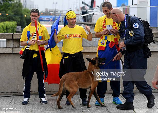 A police officer uses a sniffer dog prior to the UEFA Euro 2016 Group A match between France and Romania at Stade de France on June 10 2016 in Paris...