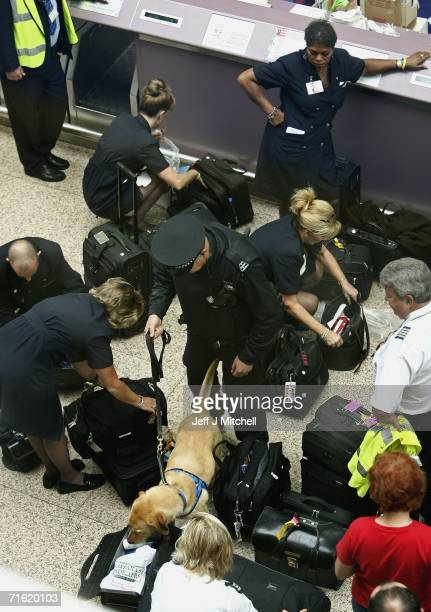A police officer with a sniffer dog checks bags at Glasgow Airport terminal on August 10 2006 in Glasgow Scotland British Airports have been thrown...