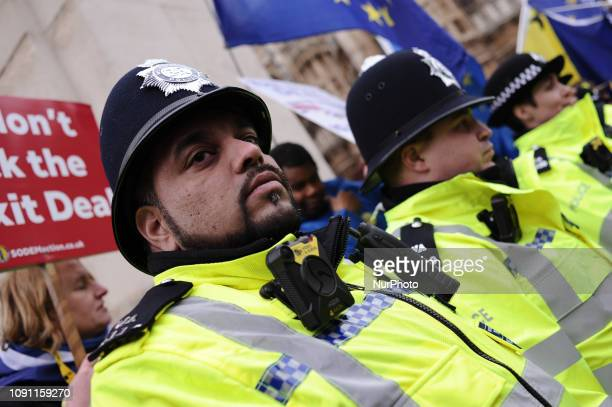 Police officers keep watch over Brexit supporters and opponents demonstrating opposite the Houses of Parliament in London, England, on January 29,...