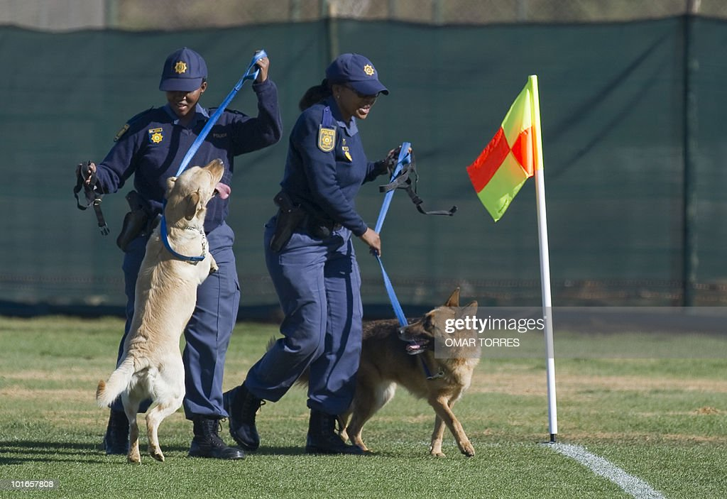 Police officers use trained dogs to check the field ahead of a training session of the Mexican football team on June 5, 2010 at the Waterstone College in Johannesburg. The 2010 World Cup will take place in South Africa from June 11 to July 11, the first time on African soil for the biggest and most prestigious competition in sport.