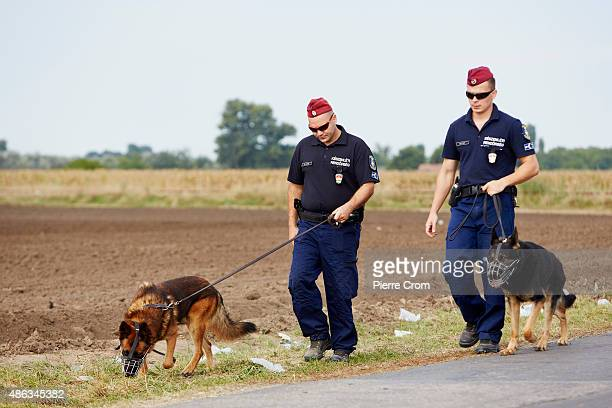 Police patrol as they wait for migrants to arrive from Serbia as they journey into Europe on September 3, 2015 in Roszke, Hungary. According to the...