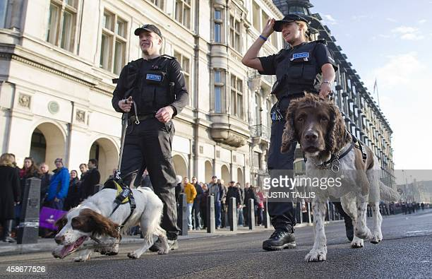 Police patrol with sniffer dogs outside the Houses of Parliament near to the venue of the Remembrance Sunday service in central London on November 9...